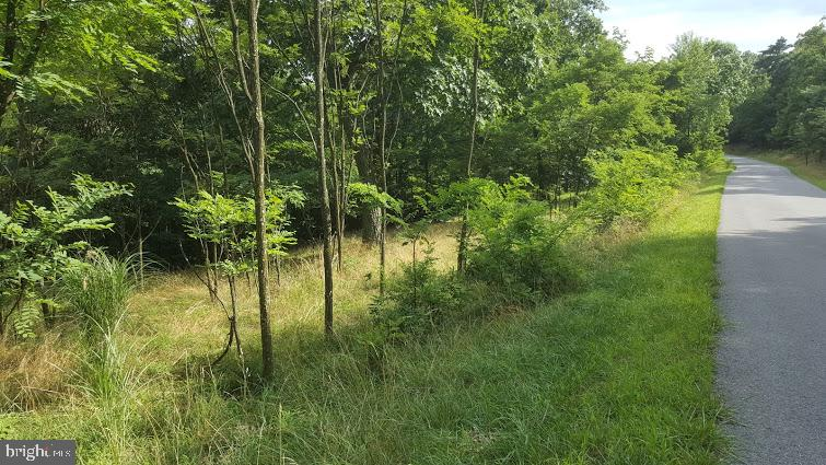 Additional photo for property listing at Parkside Drive Berkeley Springs, West Virginia 25411 United States