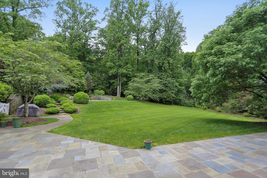 Lawn area by the patio - great for party mingling - 7301 DULANY DR, MCLEAN