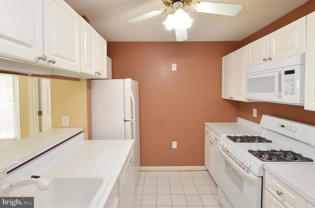 Kitchen - 21012 TIMBER RIDGE TER #203, ASHBURN