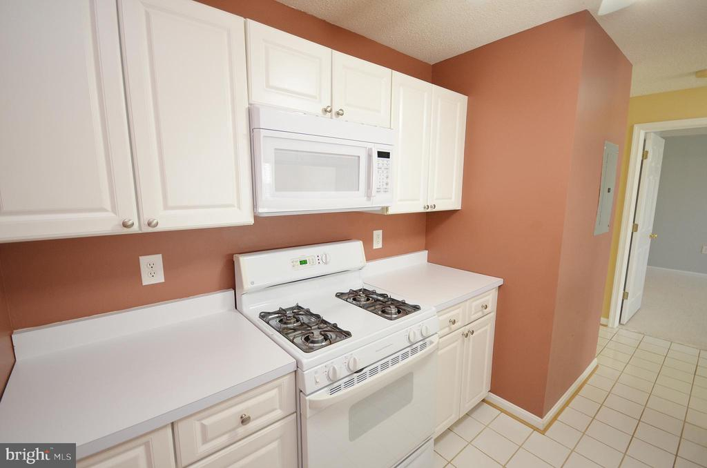 Kitchen with Gas Stove - 21012 TIMBER RIDGE TER #203, ASHBURN