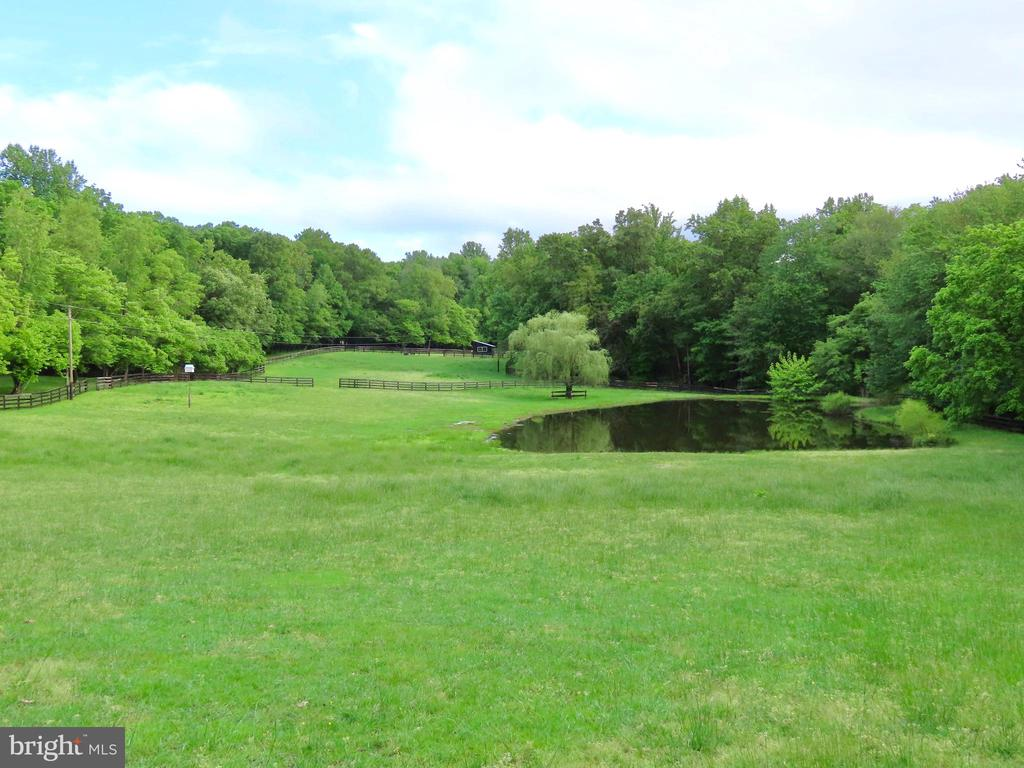 Lush pastures and stocked pond - 43470 EVANS POND RD, LEESBURG