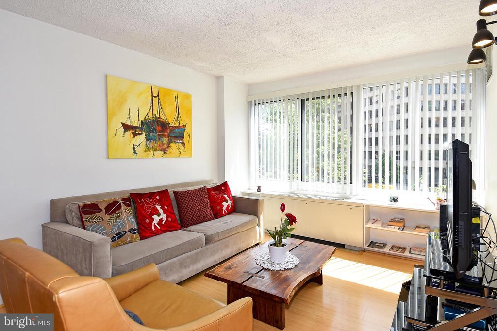 Living Room - 1330 NEW HAMPSHIRE AVE NW #311, WASHINGTON