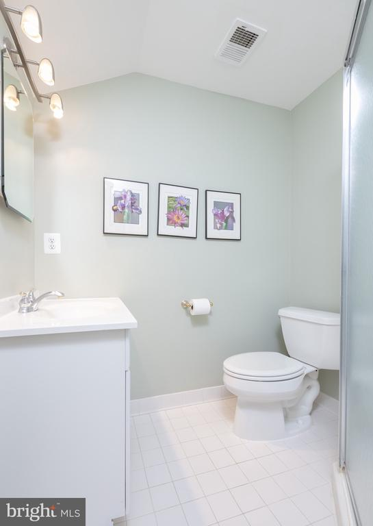 Full Bath on Lower Level - 1978 LOGAN MANOR DR, RESTON