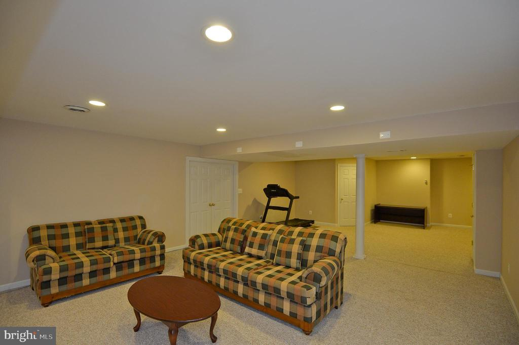 Basement - 5111 HIRST VALLEY WAY, CENTREVILLE