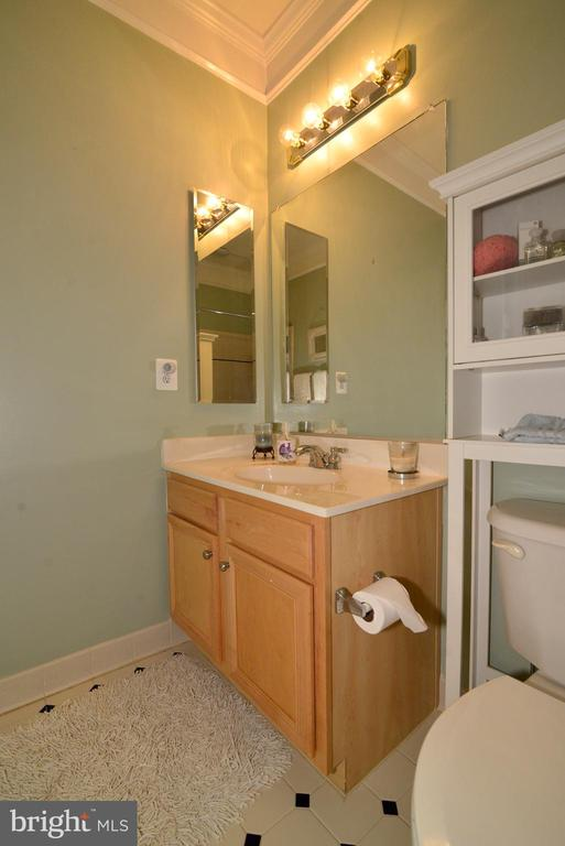 Guest Bathoom - 43198 ARBOR GREENE WAY, BROADLANDS