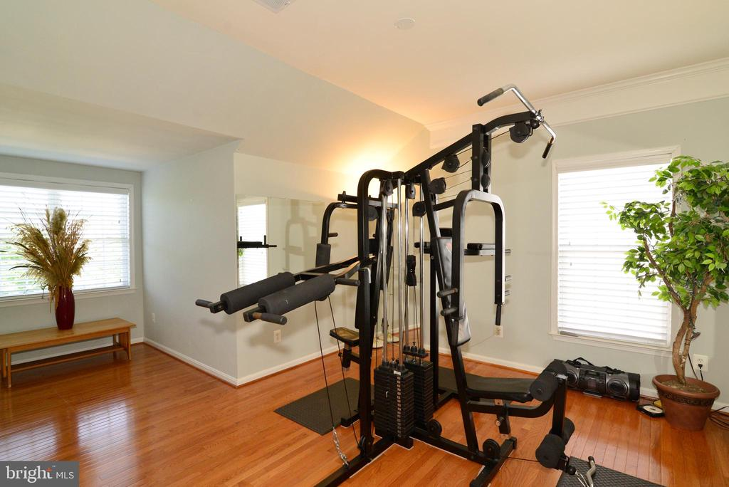 2nd Bedroom as a Weight Room - 43198 ARBOR GREENE WAY, BROADLANDS