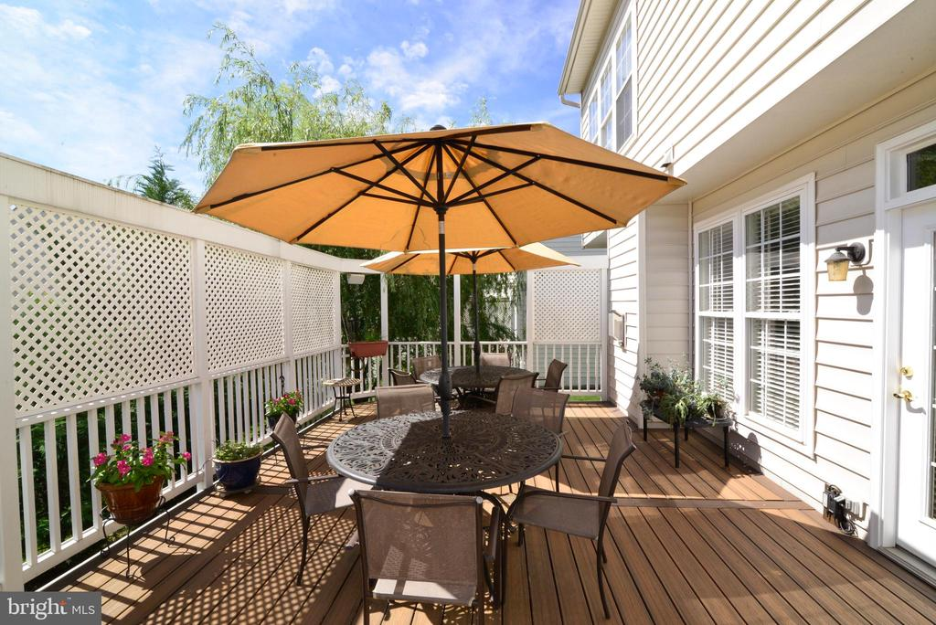 Wonderful  Deck for Entertaining - 43198 ARBOR GREENE WAY, BROADLANDS
