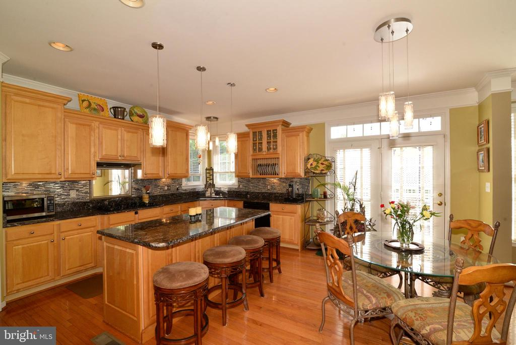 Wonderful Open Kitchen - 43198 ARBOR GREENE WAY, BROADLANDS