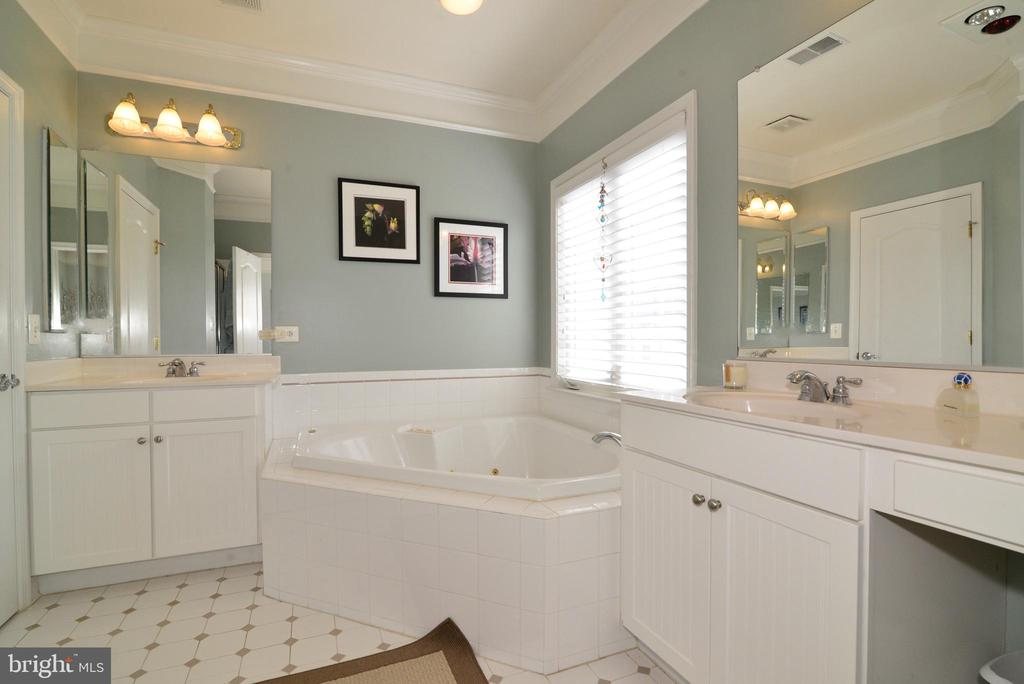 Master Bath Soaking Tub - 43198 ARBOR GREENE WAY, BROADLANDS