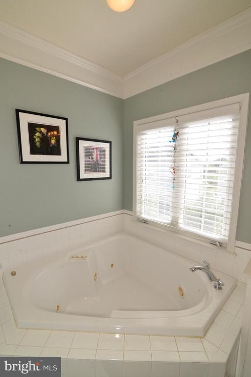 View of Soaking Tub - 43198 ARBOR GREENE WAY, BROADLANDS