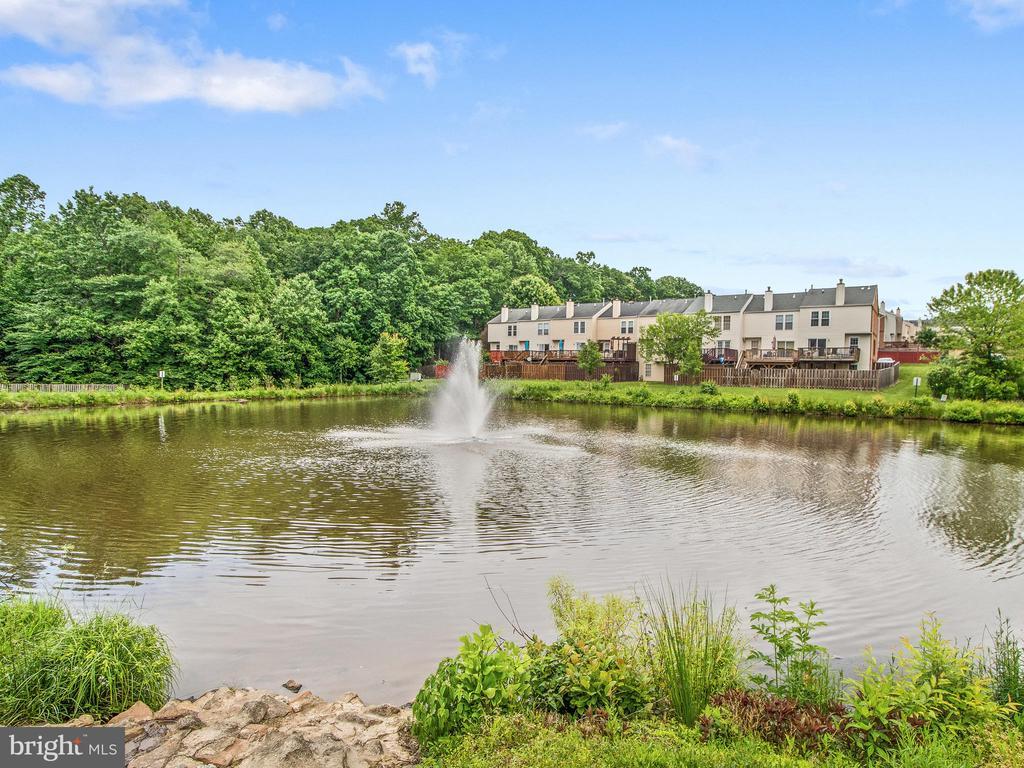 Community Pond - 12706 PERCHANCE TER, WOODBRIDGE