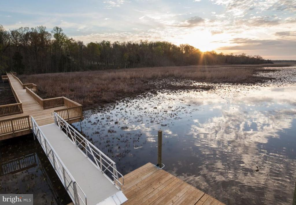 One of VA's Largest Conservation Areas - 2714 BROOKE RD, STAFFORD