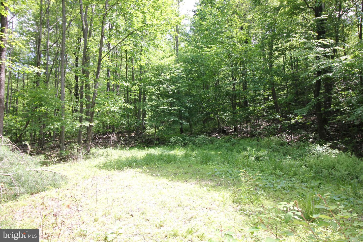 Additional photo for property listing at  McConnellsburg, Pennsylvania 17233 United States