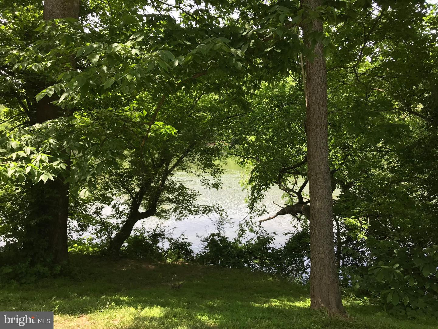 Land for Sale at Riverview Shores Dr Front Royal, Virginia 22630 United States