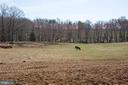 Pasture - 10455 WHISPER FARM LN, LOCUST GROVE