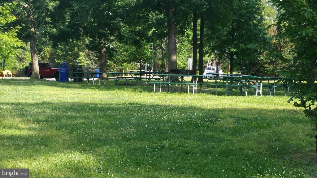 Community picnic area - 4409 1ST PL S, ARLINGTON