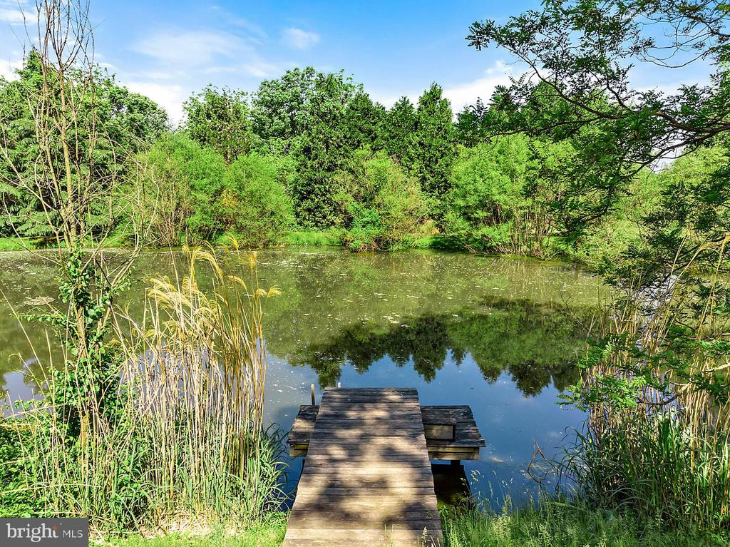 Stocked pond with dock - 39455 DIGGES VALLEY RD, HAMILTON