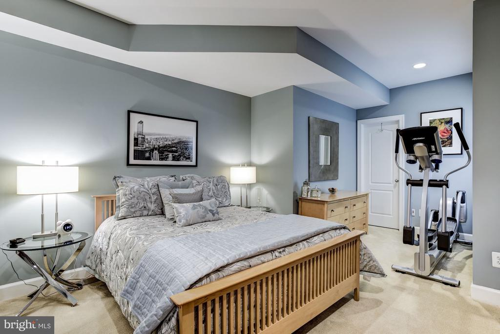 Lower Level Guest Bedroom - 11096 WHITSTONE PL, RESTON