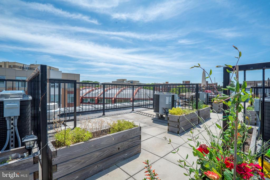 Private rooftop space - 2422 17TH ST NW #301, WASHINGTON