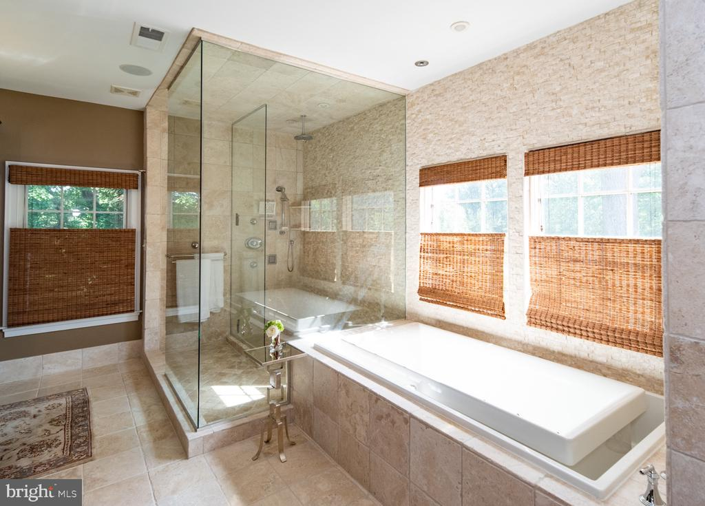 Master bath walk-in shower and infinity tub - 3606 N VERNON ST, ARLINGTON