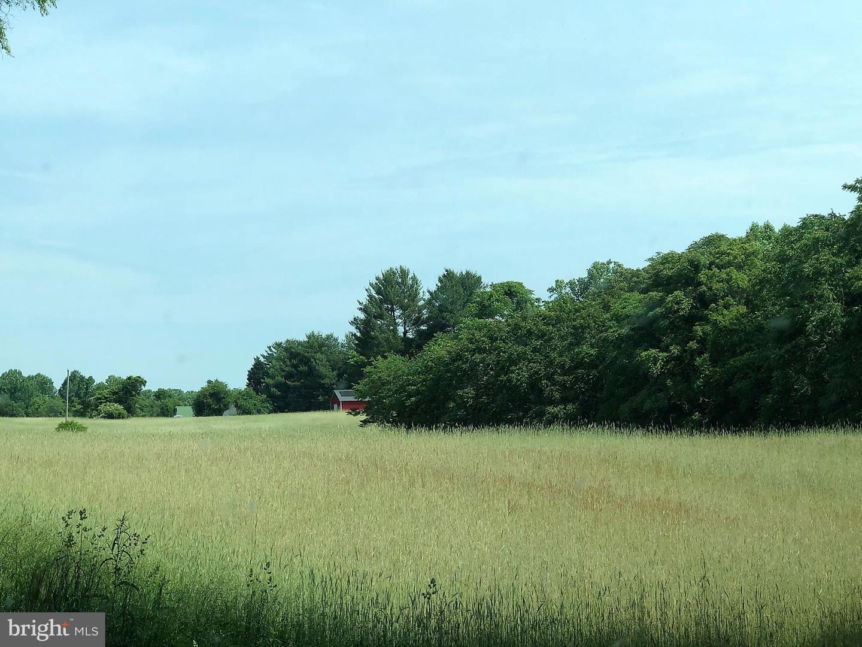 土地,用地 为 销售 在 St. Leonard, 马里兰州 20685 美国