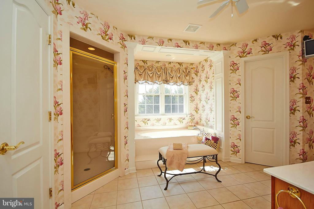 Master bath has separate shower & marble tub - 32315 DEEP MEADOW LN, LOCUST GROVE