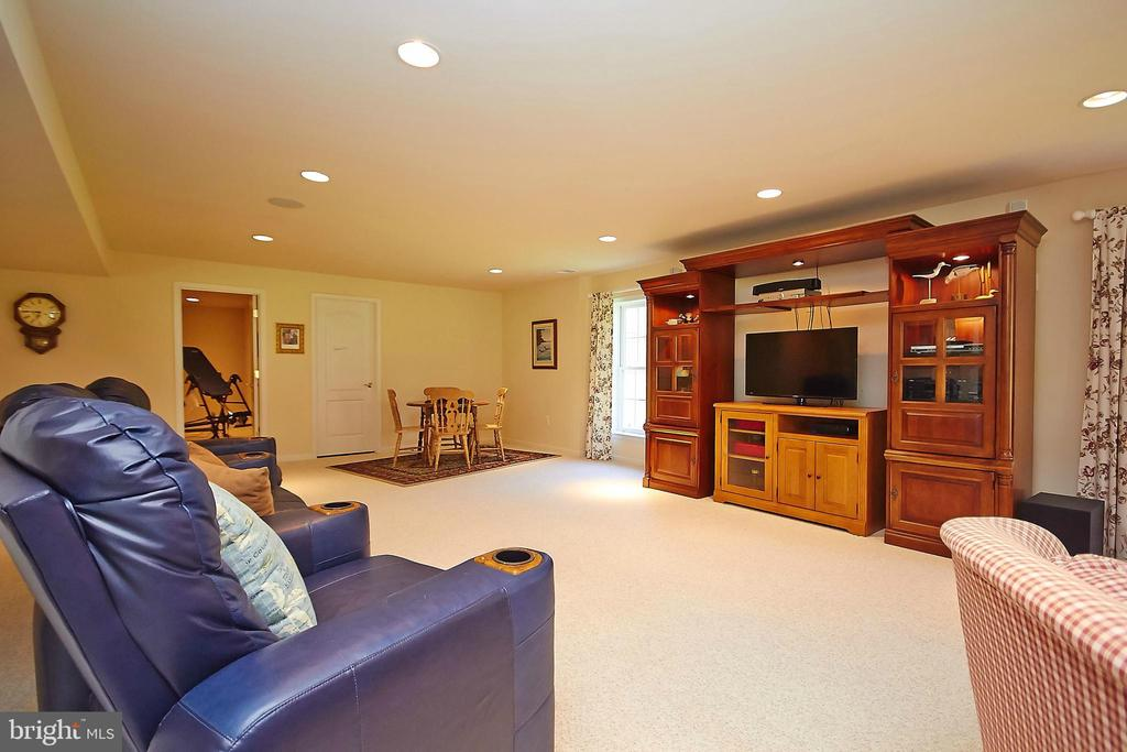 Finished basement w/lots of light - 32315 DEEP MEADOW LN, LOCUST GROVE
