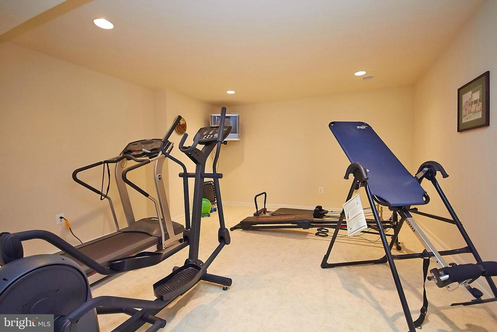 Exercise room/den on lower level - 32315 DEEP MEADOW LN, LOCUST GROVE