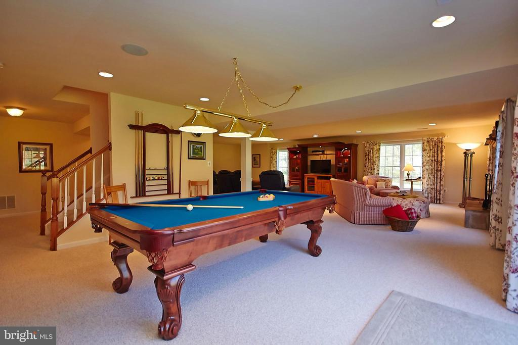 Huge rec room in finished basement - 32315 DEEP MEADOW LN, LOCUST GROVE