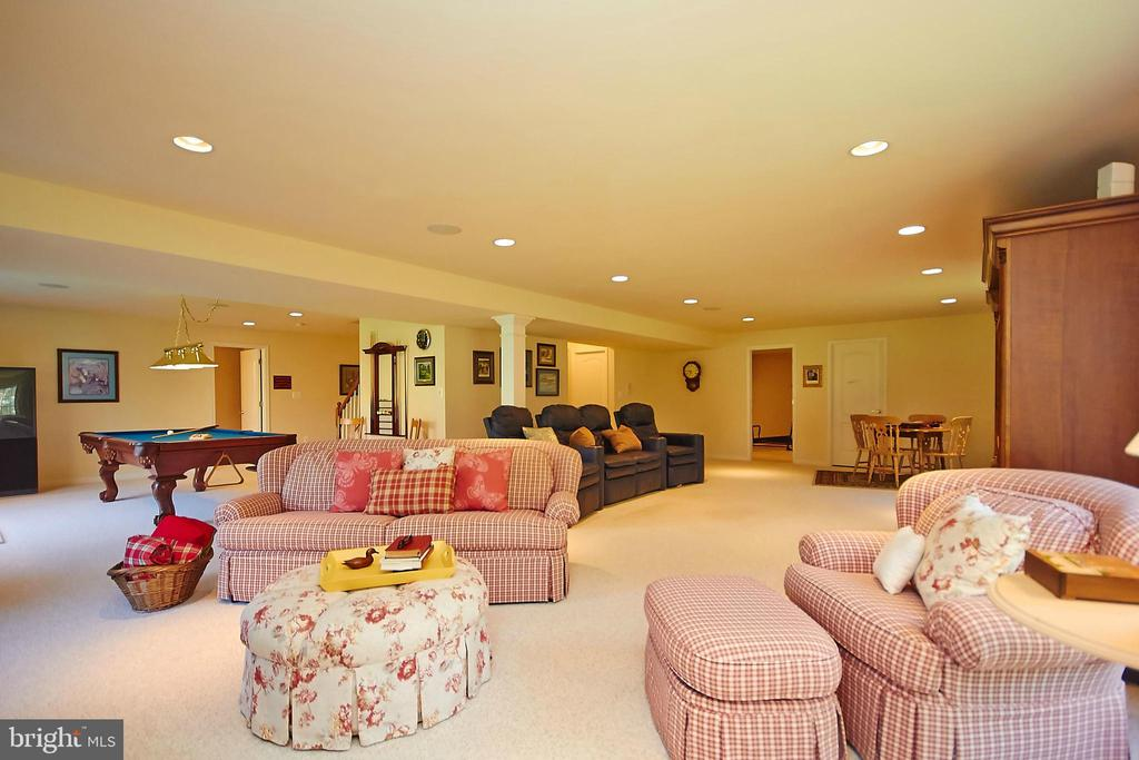 Massive walk-out basement - 32315 DEEP MEADOW LN, LOCUST GROVE