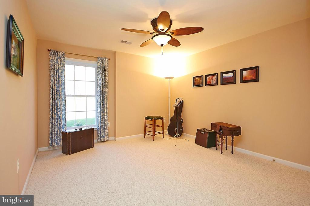 True 5th bedroom in finished walk-out basement - 32315 DEEP MEADOW LN, LOCUST GROVE