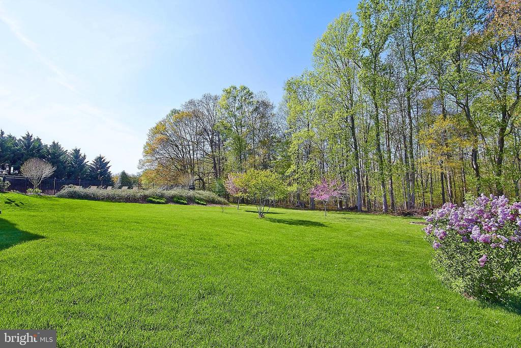 Beautiful landscaping thru-out - 32315 DEEP MEADOW LN, LOCUST GROVE