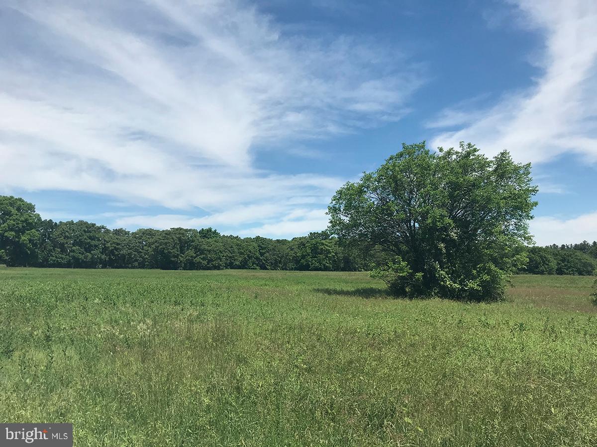 أراضي للـ Sale في Leesburg, Virginia 20176 United States