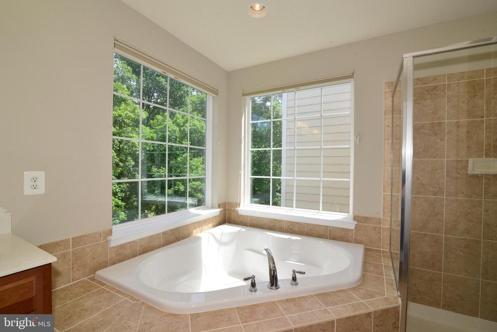 Soaking tub with  view of trees - 42752 KEILLER TER, ASHBURN