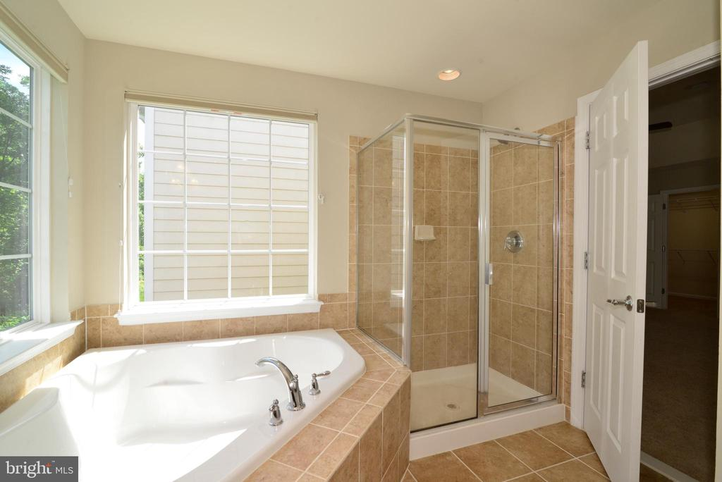 Separate shower in Master BAth - 42752 KEILLER TER, ASHBURN