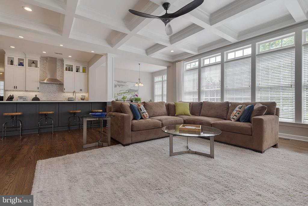 Family Room with Coffered Ceilings - 19448 MILL DAM PL, LEESBURG