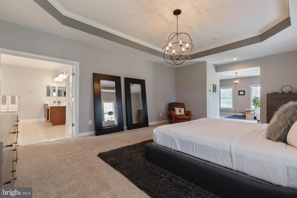 Master Bedroom Suite - 19448 MILL DAM PL, LEESBURG