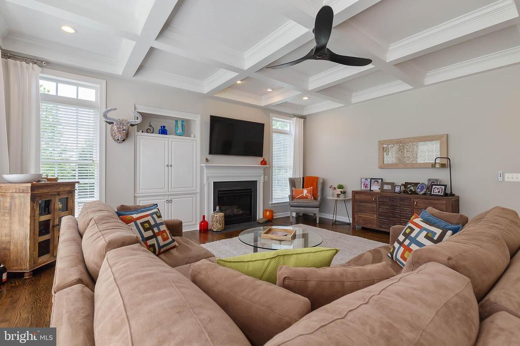 Family Room with Gas Fireplace & Built-in's - 19448 MILL DAM PL, LEESBURG