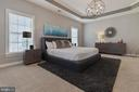 Master Bedroom Suite with Tray Ceiling - 19448 MILL DAM PL, LEESBURG