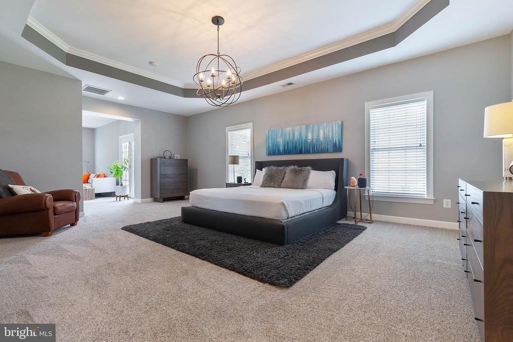 Master Bedroom Suite - 19448 MILL DAM PL, LEESBURG