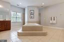 Luxury Bathroom with Separate Soaking Tub - 19448 MILL DAM PL, LEESBURG