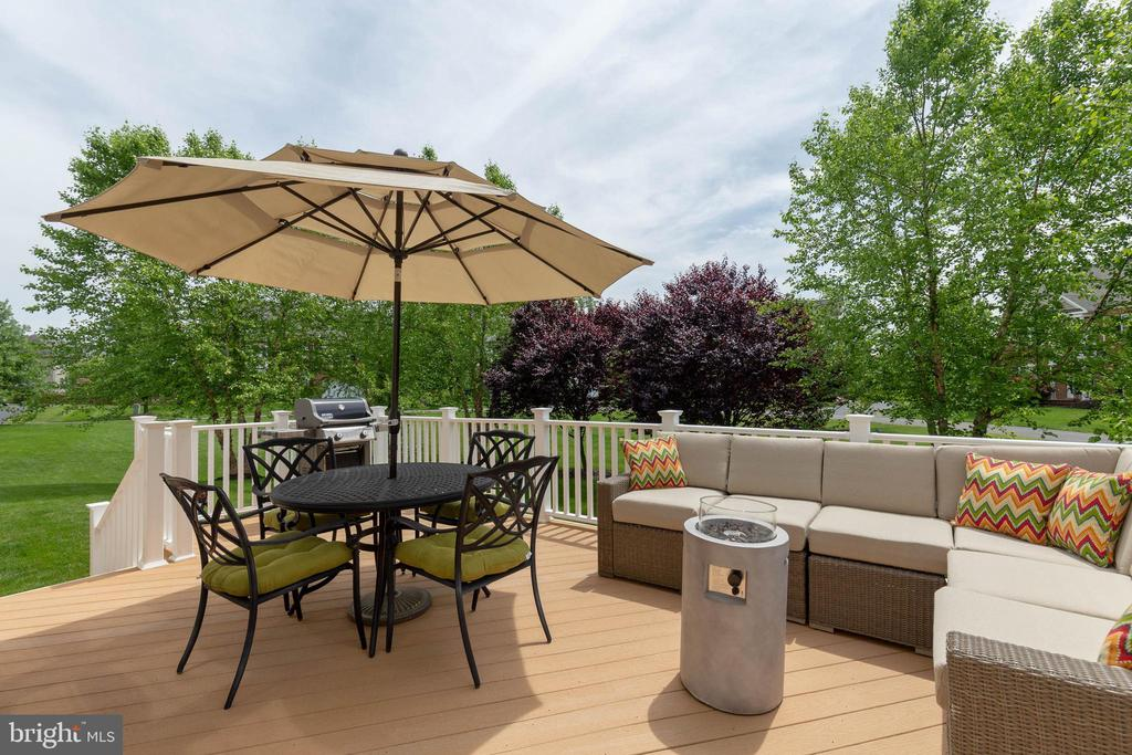 Wonderful Deck, Great for Entertaining - 19448 MILL DAM PL, LEESBURG