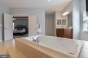 Master Bathroom Soaking Tub - 19448 MILL DAM PL, LEESBURG