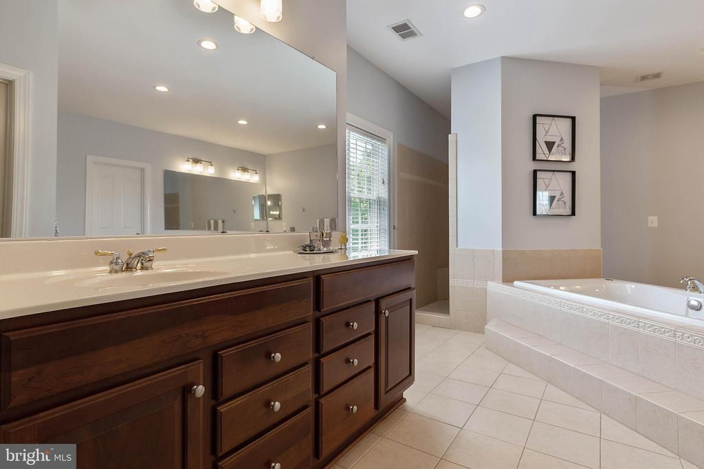 Master Bathroom - 19448 MILL DAM PL, LEESBURG