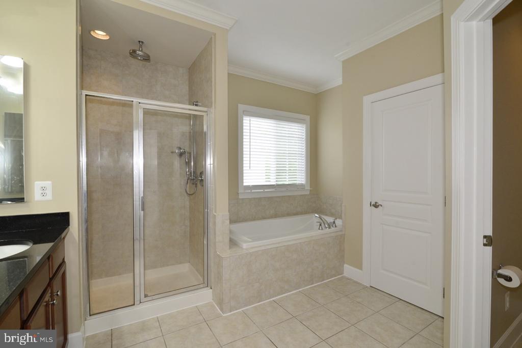Master Bathroom - 23110 BRONSTEIN LN, ASHBURN