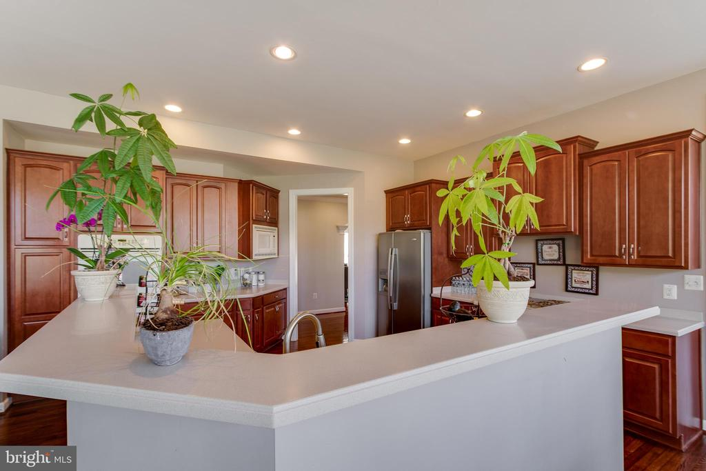 Bar height counters in kitchen - 18605 KERILL RD, TRIANGLE