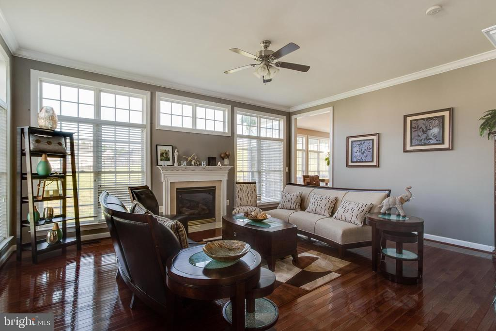 Gas Fireplace in formal living room - 18605 KERILL RD, TRIANGLE