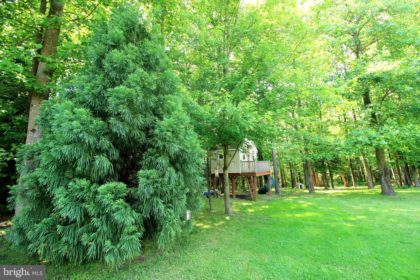 Additional photo for property listing at  Delmar, Maryland 21875 Vereinigte Staaten