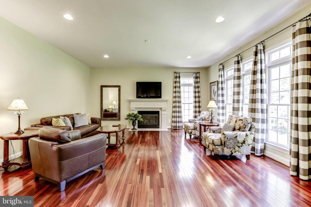 FAMILY ROOM, GAS FIREPLACE - 27651 EQUINE CT, CHANTILLY