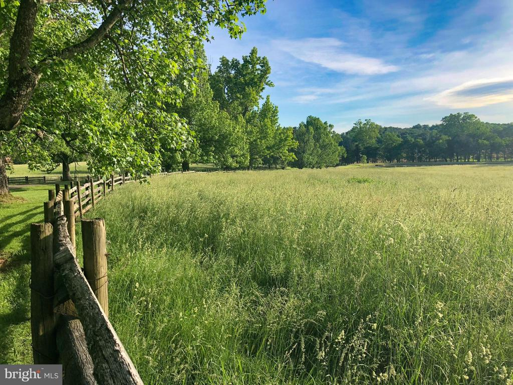 Beautiful field with fencing - 8362 HOLTZCLAW RD, WARRENTON